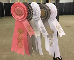 Raven SturbridgeMA NATS Ribbons